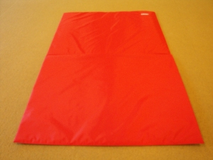 Foldable gym mat, 145x100x1 cm