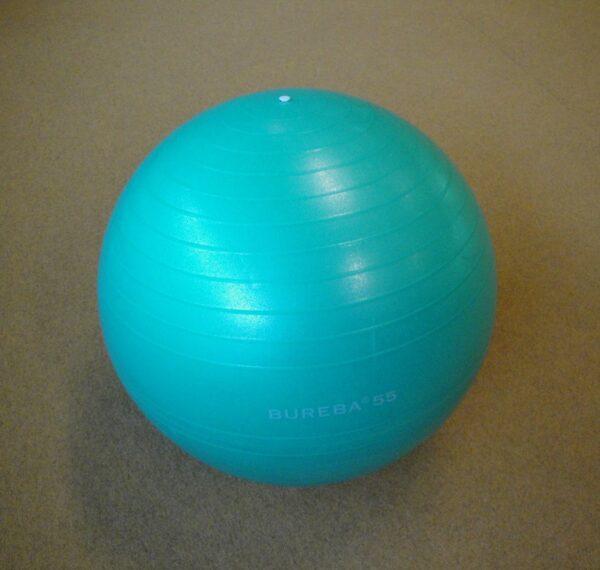 Gym ball Trendy Sport, d=55 cm