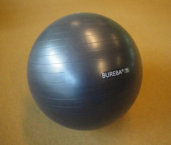 Võimlemispall Trendy Sport, d=75 cm